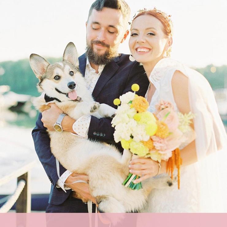 25 наймиліших весільних фото з домашніми улюбленцями – Oh My Wed Day